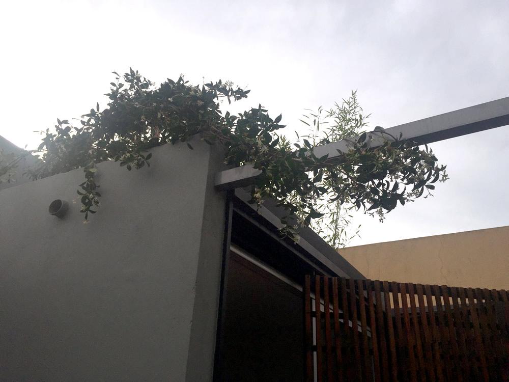 Terraza Villa Urquiza